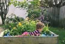 Gardening / by Jeri Alcala