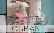 Cleaning/Organizing / by Heather Frye