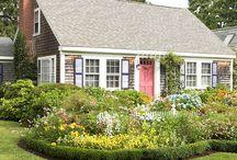 Garden Ideas / by Vanessa Velez