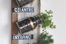 gardening ideas / by Flavia Samperi