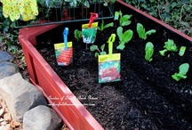 Gardening / by Janette Yerges