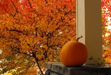 Autumn Decor and Ideas / by Primitive Memories (Heather Carter)