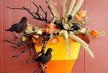 Halloween / by Stephanie Pipins-Galloway