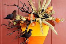 Halloween / by Allison Cornett