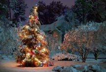 Christmas / by Dee Skidmore