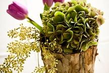 Pretty Flower Centerpieces / by Lianna Knight