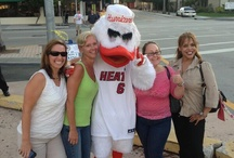 #FindSebastian / Sebastian the Ibis rode the Metrorail and hung out with Miami Heat fans outside American Airlines Arena prior to Wednesday's game one of the 2013 Eastern Conference Finals. / by Miami Hurricanes