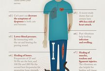 Infographics / by Issy Jimenez