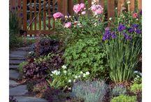 Gardening / by Denise Thatcher