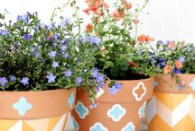 garden, plants & flowers / by Pollinate Media Group®