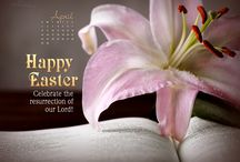 Easter Wallpaper / by Crosscards .