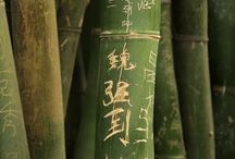 Exotic Style: Asian Bamboo / by Kay