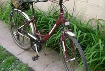 i love my bike. / by Nicole Pelton