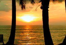 Life's A Beach / by Frances Farmer