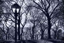 black & white / by Hazel Beth Horn
