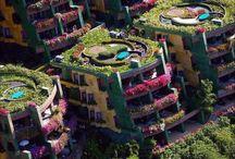 Gardens / by Johnnie Enloe