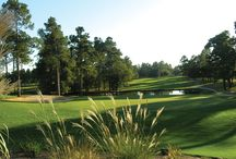 South Carolina Courses on EZLinks.com / EZLinks.com has discount tee times at more than 22 incredible golf courses in South Carolina. Book your discount golf tee times today! / by EZLinks.com Tee Times
