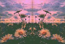 Trippy and dreamy / by Maya Eshcol