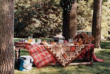 Fall Days and Nights / Fall harvests, county fairs, tail-gating parties, and Thanksgiving! Whew! We've got a lot to do! Lots of ideas here! / by Pam Barcelou