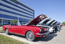Annual Mustang Summer BBQ / We joined the Golden Horseshoe Mustang Association and the Greater Toronto Area Mustang Club during their annual summer BBQ and got to see a whole lotta Ford Mustangs from the past 49 years.  / by Ford Canada