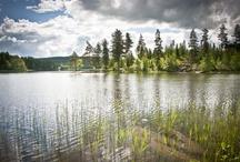 Zomer / De zomer in Zweden biedt prachtige landschappen en ruige natuur bestaande uit bossen, bergen, fjällen, meren en watervallen. De natuur is te vinden door het hele land, zelfs in steden als Stockholm en Gothenburg. Daar vind je de combinatie van een ongerepte periferie met het trendy stadsleven. Volgens het Zweedse Allemansrecht mag je je tent overal opzetten of je caravan zomaar ergens neerzetten waar je maar wilt. Dit maakt Zweden het perfecte camping land, althans volgens ons;) / by VisitSweden NL