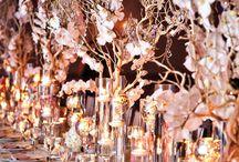 Anna Wedding / by VanTeresa Bui
