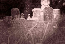 Cemetary Photography / by Lorene Newsome