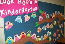 Kindergarten Ideas / by Kim Sego