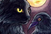 Happy Halloween / by Fiona McLean-burgess