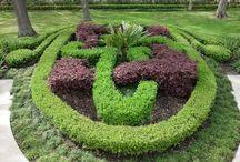 Garden / by Heidi Rawle Shinners