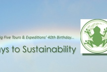 40 Ways to Sustainability  / Join us in creating our 40 Ways to sustainability road map, which will serve as the basis for a sustainable future.  / by Big Five