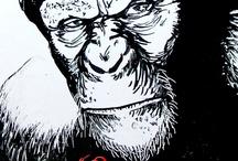 Craig Cheapé - Whiteboard Artist / Amazing Whiteboard Artist - Craig Cheapé  / by Quartet Brand