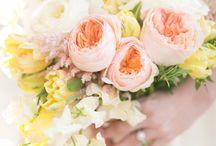 flowers / by jazmin escalera