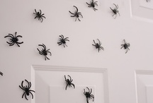 Halloween / by Kristen price