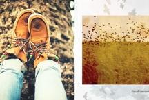 Fashion | style / by Melanie Mulder
