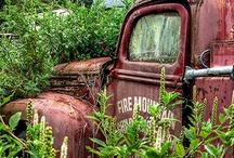Rustic Charm / by Monica Warford