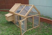 Chicken Coops / by Tennette Curry