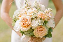 Wedding / by Bailey Stuffel