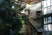 conservatory / by ashley schulz