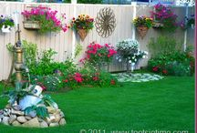 Patio/ Backyard  / by Toni Thibodeaux