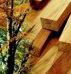 Wood / by Vern Wilson