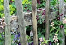 Fences of all kinds / by Sharon Johnson