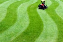 mowing with rider / by Billie Hanson
