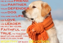 Dog Love... / by Nancy Snyder
