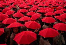 Red  / by Jennifer Kotas