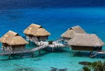 Vacations Ideas / by Kelly Stachura