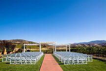 Weddings / by Leoness Cellars