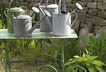 GALVANIZED WATERING CANS AND BUCKETS / by Josie Meisberger