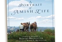 Amish Farms and Fields / by Wanda Brunstetter