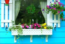 Curb Appeal / by Janet Caen